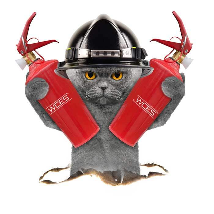 Firefighter Cat